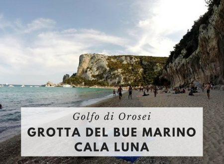 Una giornata nel Golfo di Orosei con i bambini: Grotta del Bue Marino e Cala Luna, Museo della Foca Monaca
