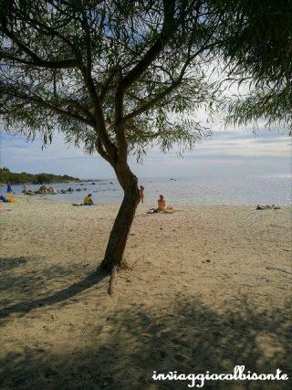 Itinerario nel nord-est della Sardegna - La spiaggia di Budoni