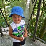 Egeskov - Tree Top Climbing