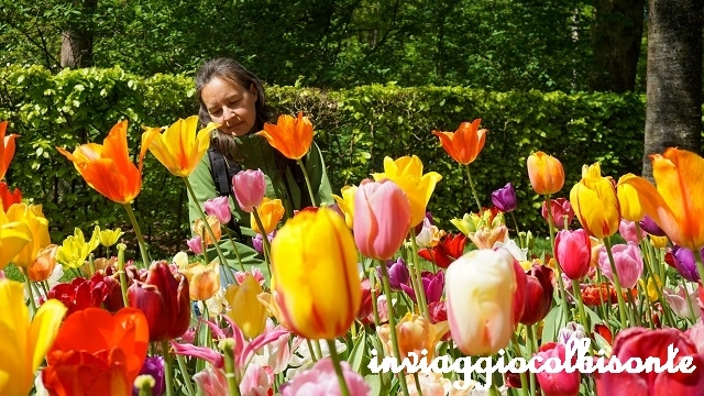 Itinerario in Olanda Family Friendly Keukenhof
