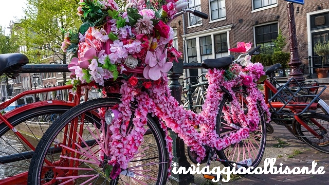 Itinerario in Olanda Family Friendly Amsterdam Bici